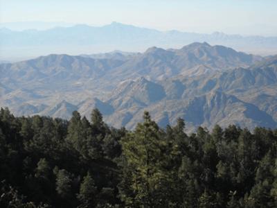 Mount Graham, AZ